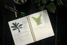 atelierdestilleuls.com carnet entretien plantes 03-2