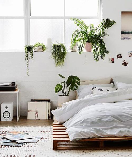 Une chambre jungle à dominante de blanc avec palettes en bois