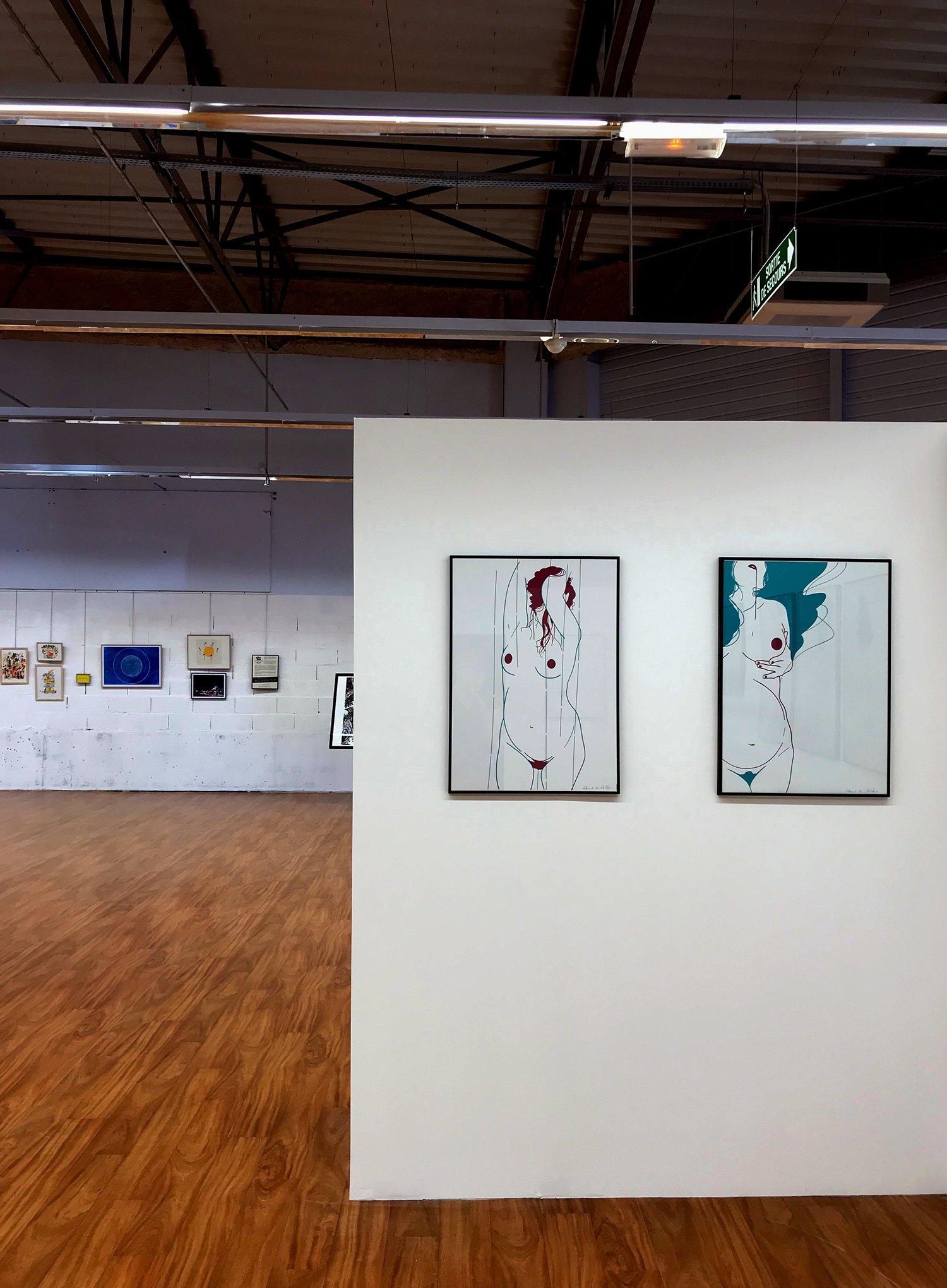 """expo l'art ou on ne l'attend pas,   ANGÈLE POULAIN VILLENEUVE alias El René -  série d'illustrations """"Ailleurs"""""""