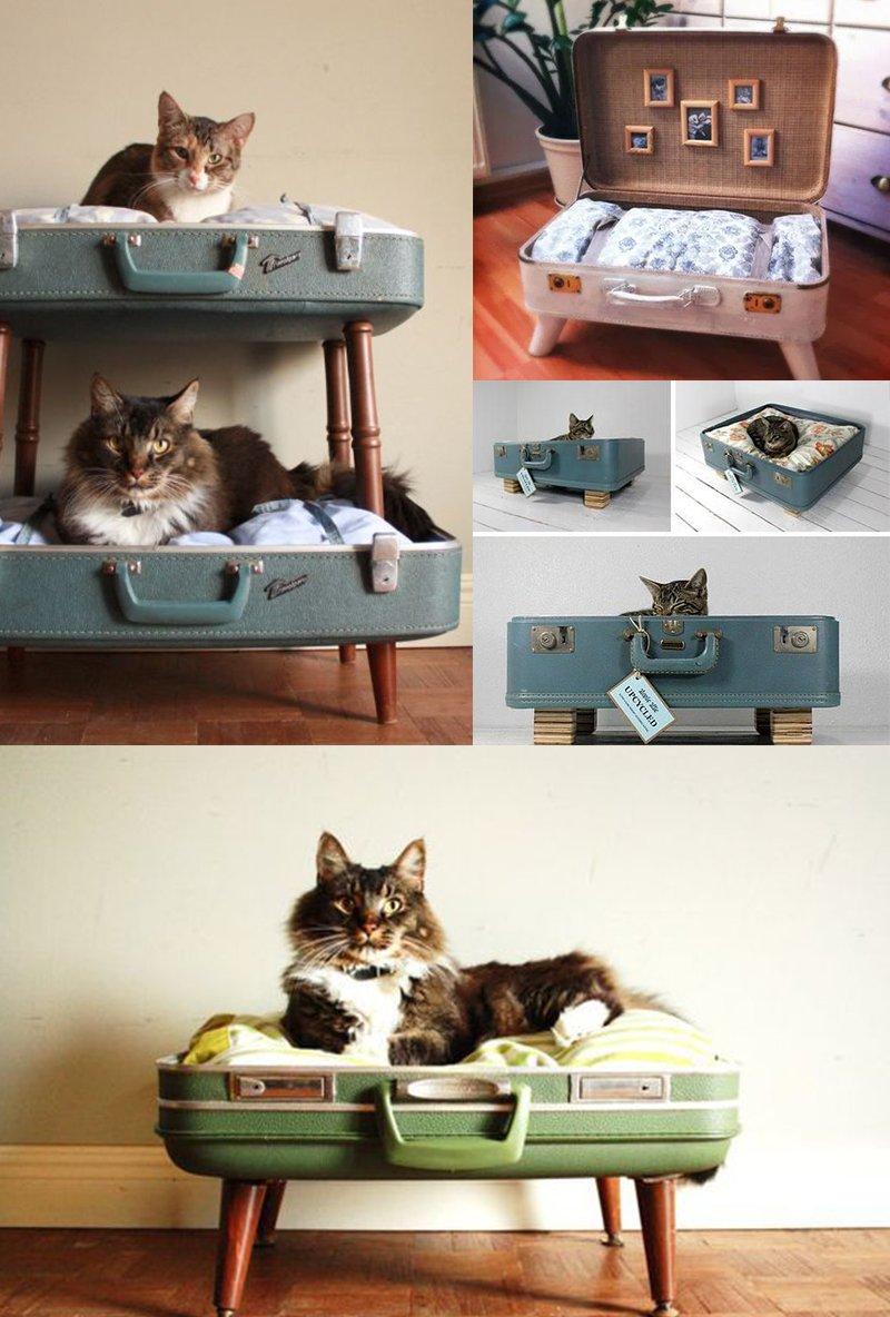 Utiliser une valise pour faire un cat bed