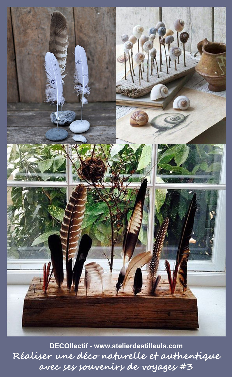 Les plumes et coquillages piqués dans du bois ou sur des cailloux