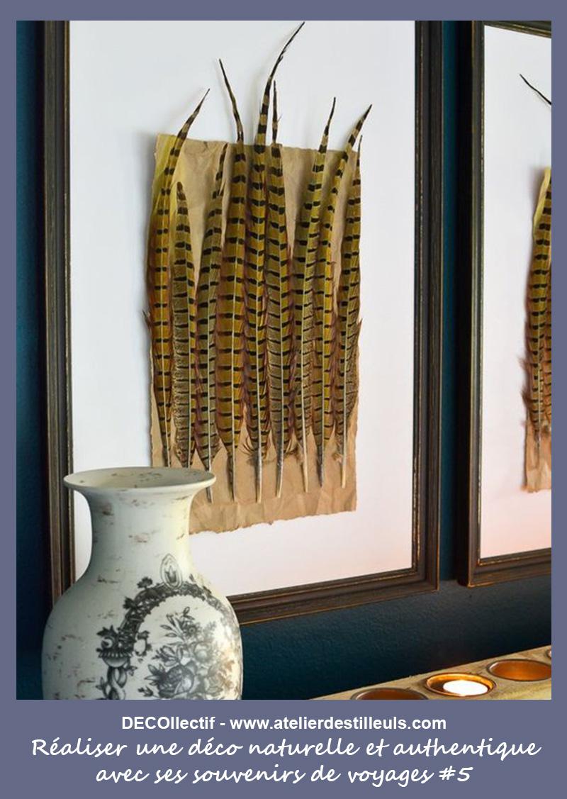 Les plumes et végétaux pressés sous-cadres ou collés sur papier