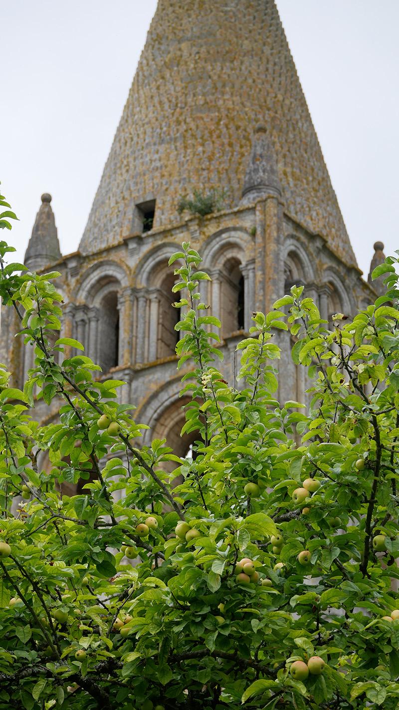 détail du clocher de l'abbaye de Bassac en Charente