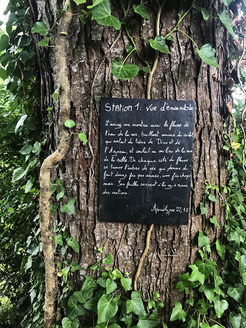 témoignage sur un arbre de l'abbaye de Bassac en Charente